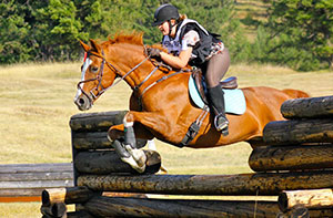 Eventing Mini Events